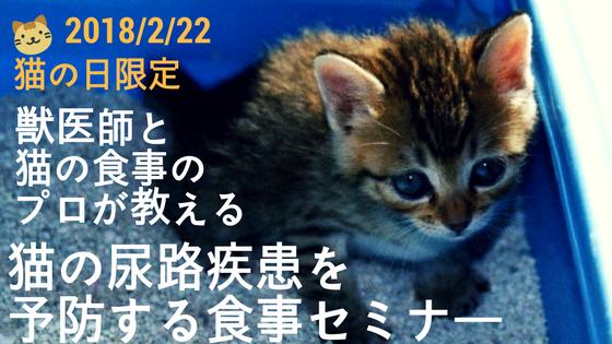猫 ストルバイト ストラバイト結石 膀胱炎 尿路疾患